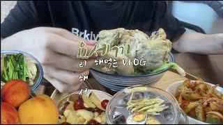 [여름보양식편vlog]삼계탕, 콩국수, 오이무침, 복숭…