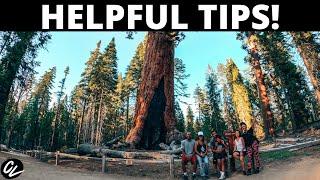Yosemite National Park FAMILY TRIP!
