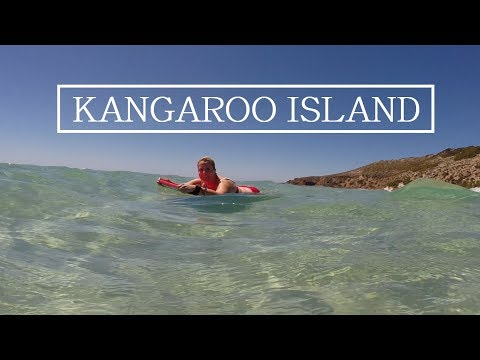 This is why we return to KANGAROO ISLAND every year