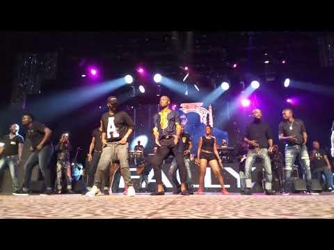 Didier Drogba, la vedette au concert de Fally Ipupa