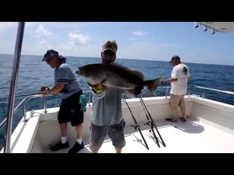 Port Richey Fishing Trip 2019
