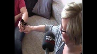 Jelle trifft auf ihre größte Angst: eine Vogelspinne