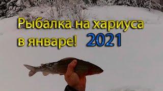 Рыбалка на хариуса в январе 2021, глухозимье! Рыбалка в Коми на таёжной реке.