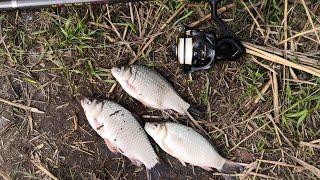 Короткая рыбалка с обрыва на реке