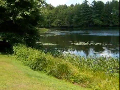 Lakefront Estate Property for Sale- Lowered price 4/7/2014