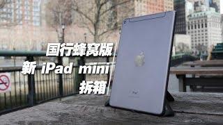 国行蜂窝版iPad mini拆箱:随时随地联网打游戏 | 凰家vlog