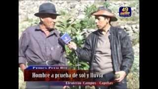 """AGRICULTOR DE 80 AÑOS PRESENTA ÉXITOS EN LA REGIÓN MAS POBRE DEL PERU """"HUANCAVELICA"""""""