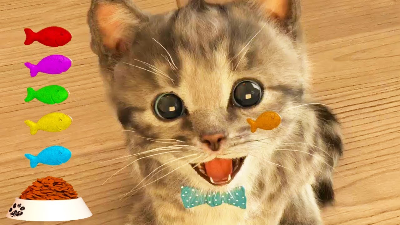 Little Kitten My Favorite Cute Cat - Fun Cartoon Game For ...