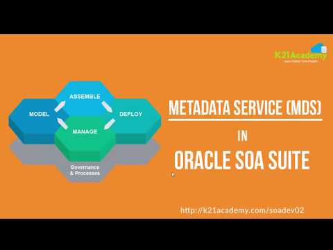 Learn about MetaData Services (MDS) - 5 Min Tech Clip