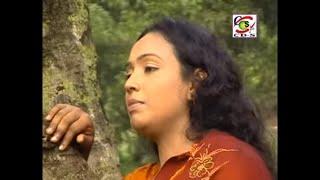 Gambar cover Murshid Tomar Name   Nargis   Bangla Murshidi Gaan