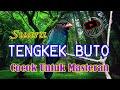 Suara Tengkek Buto Gacor Cocok Untuk Masteran Semua Burung Kicau Masteran Burung Lovebird Juara  Mp3 - Mp4 Download