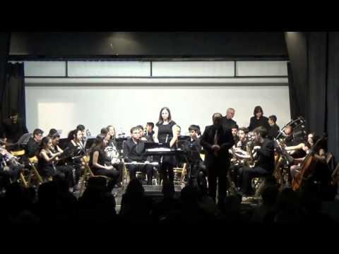 Actuación da Banda de Xinzo de Limia