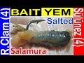Balık Yemi Sülünez Salamura nasıl hazırlanır? Sardalya kokulu Sülünez yapılışı Surf Casting 7fishing