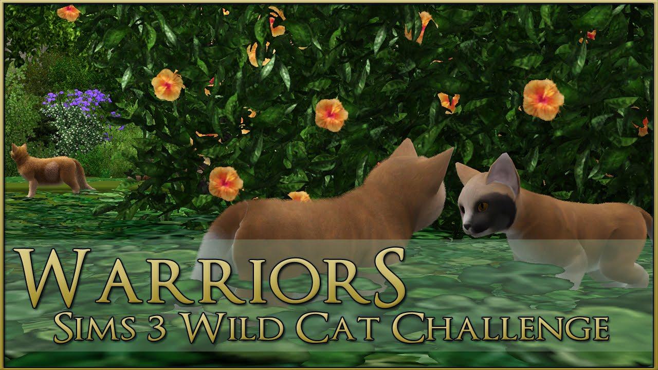 Sims  Warrior Cats Seri