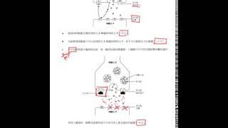 Publication Date: 2020-04-17 | Video Title: 【拆解熱門題目】結構題:第四部分(中文版題目)