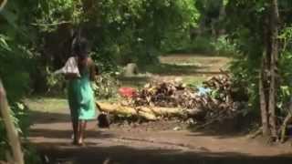 Nicaraguan Revolution Project