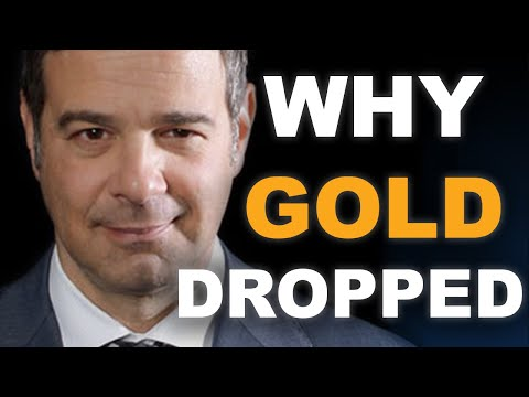 Why Gold Dropped   Andy Schectman