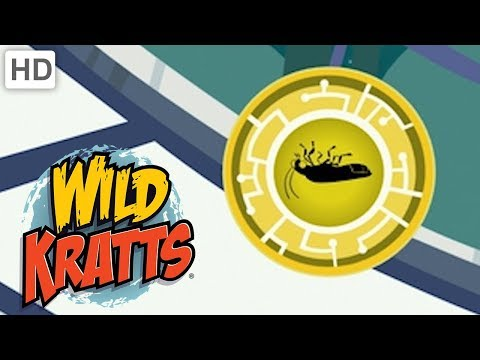 Wild Kratts  Best Season 1 Moments! Part 7  Kids Videos