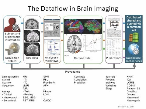 Tools of the Trade: From Data to Results in Neuroimaging with Dr. Satrajit Ghosh