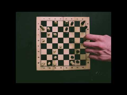 Stop motion CHESS
