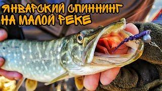 Щука и окунь в январе на спиннинг!!! Разведка нового участка малой реки!!!