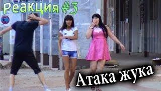 Розыгрыш: Атака Жука / Bug Attack Prank (Реакция 3)