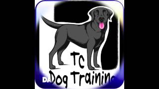 Tc Dog Training On Radio Essex
