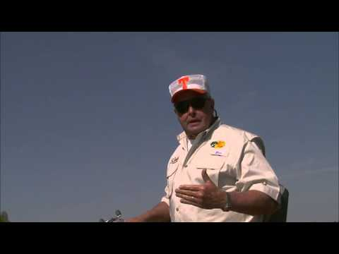 Fishing Tips: Best Suspended Bass Tips