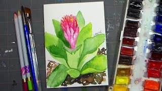 Bromeliad Flower in Watercolor REAL-TIME Tutorial!