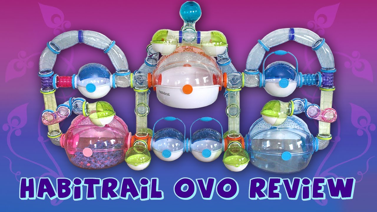 Habitrail OVO Review - YouTube