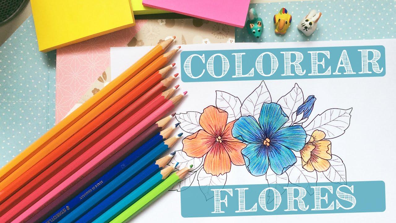 C mo colorear flores con l pices de colores - Colores para colorear ...