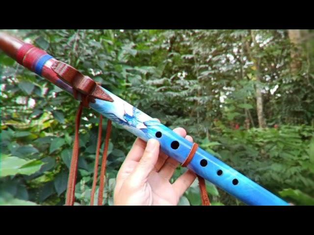 Colibri bleu flûte indigène - A