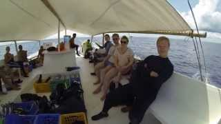 Cathedral dive site with the Go Scuba crew. HD