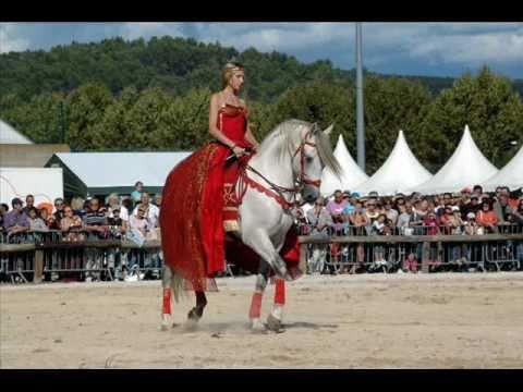 Spectacle Equestre Ibrique Quintero El Magnifico YouTube