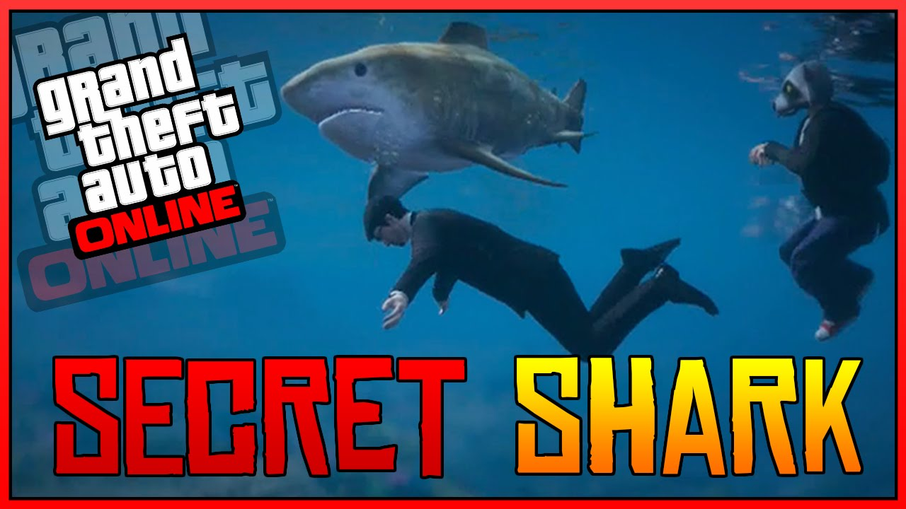 can you get sharks on gta online