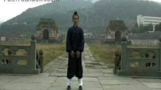 Wu Xing Qi Gong Performed By Master Yuan