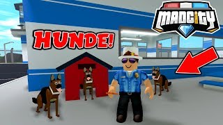 🐶 POLICE HUNDE IN MAD CITY ROBLOX