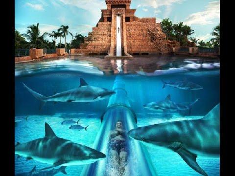 Paradise Island Resort Dubai