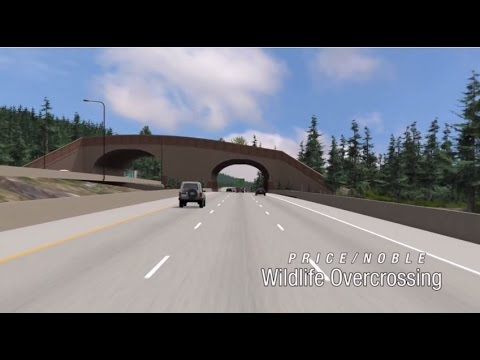 Connecting Wildlife Habitat Under and Over I-90