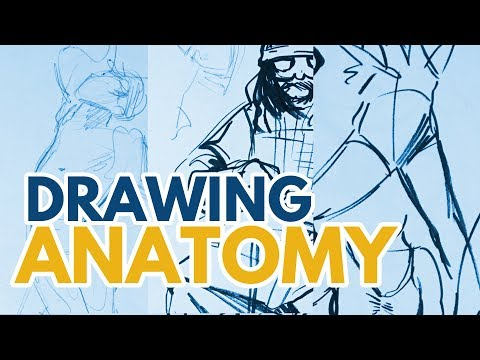 How to Improve Your Anatomy Drawing // Tips & Chatting