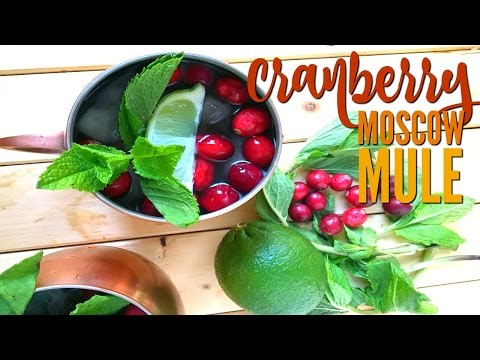 How To Make Holiday Cocktails: Cranbery Moscow Mule #HomegirlDoesTheHolidays
