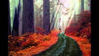 ~ Autumn Dream ~