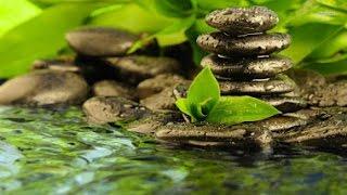 EAU QUI RUISSSELLE & Douce Musique Zen ─ Sommeil Profond, Etude, Méditation, Spa ☯ 100% Relax