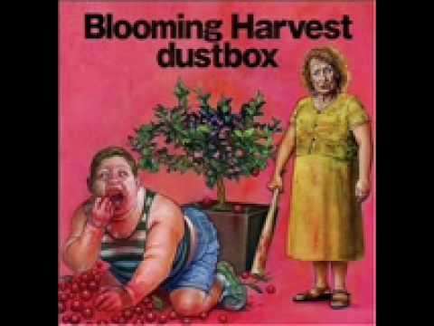 Dustbox - Jupiter