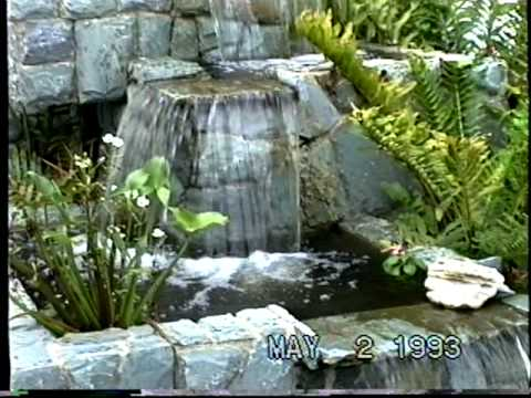 Jardin acuatico justiniano youtube for Jardines acuaticos
