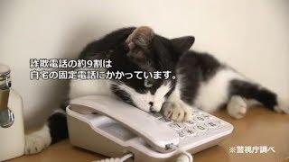 にゃんこシリーズ第3弾(一緒に対策にゃ♪)
