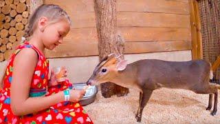 Ярослава в Контактном Зоопарке для детей кормим и общаемся с животными | Tiki Taki KIds