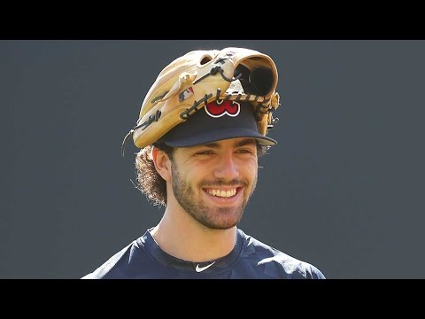 |Dansby Swanson Highlights|