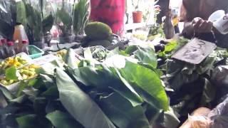 KWATTA MARKT : We nemen een kijkje op de vriendelijke markt op zondag - 2013