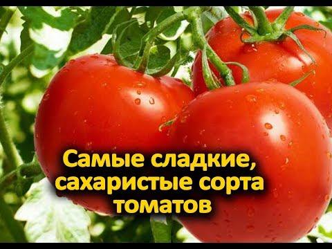 Самые сладкие, сахаристые сорта томатов для теплиц и открытого грунта!